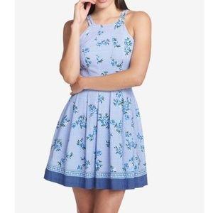 GUESS | Floral A-Line Sheath Striped Blue Dress 6